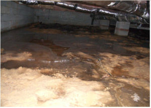 moisture control - standing water